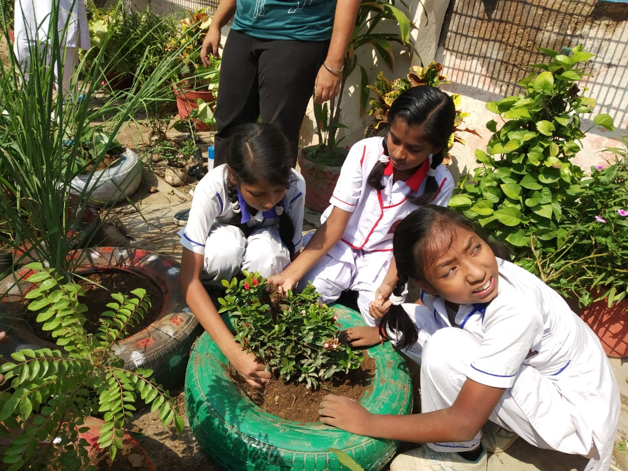 School Green Infrastructure Projects